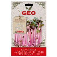 Lombarda red cabbage germinar geo - 12g